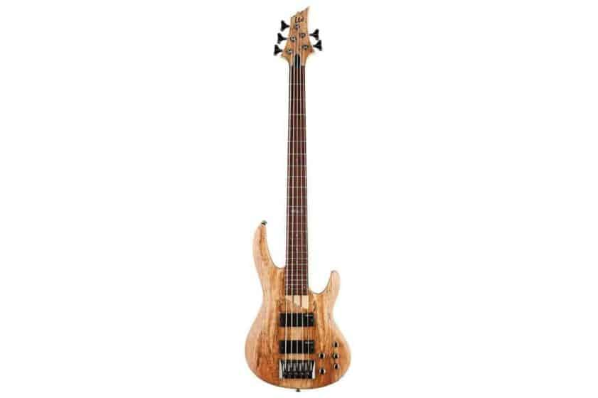 ESP LTD B Series B-205 Five-String Bass Guitar - Natural Satin Review